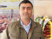 HDP - HDP'li Zeydan kıvırdı