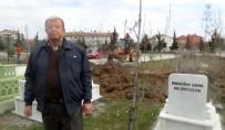 KAMULAŞTIRMA - Mezarlık Davası Cenazelerin Nakliyle Bitti