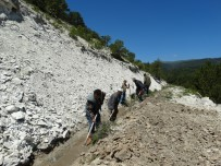 SU KANALI - Sulama Kanallarının Temizliğini Vatandaşlar Yapıyor