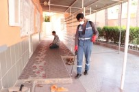CEYLANPINAR - Suriye Sınırındaki Camilerde İlaçlama Çalışması