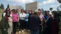 SEYİT ONBAŞI - Gülüçlü Kadınlar Çanakkale'yi Gezdi