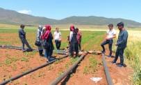ORGANIK TARıM - İslahiye MYO Organik Tarım Programı Öğrencileri Sahada