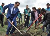 BAŞSAVCı - Kars Denetimli Serbestlik Müdürlüğü Hatıra Ormanı Oluşturdu
