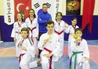 GÜMÜŞ MADALYA - Taekwondo Dereceleri Sevindirdi