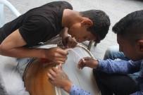 KAYHAN - Davul Üreticileri Ramazana Hazır