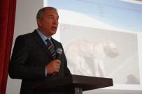 ZORUNLU TRAFİK SİGORTASI - Tokat'ta Hayvan Kazaları İçin Farkındalık Semineri