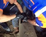 TıP FAKÜLTESI - Ayağı Tarım Makinesine Sıkıştı