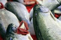 ALABALIK - Balıkçılar Ramazan'dan Umutlu