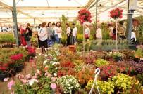 HÜSEYIN MUTLU - Çiçek Festivali Renkli Görüntülere Sahne Oldu