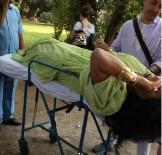 TELEVİZYON - Bülent Ersoy'u yılan ısırdı