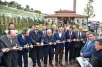 TÜRKIYE BÜYÜK MILLET MECLISI - İmam Maturidi Camii Bereketiyle Açıldı