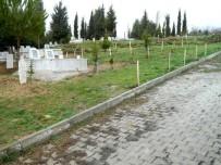 VEYSEL EROĞLU - Kütahya'da 8 Mezarlığa 4 Bin 433 Adet Fidan Dikildi