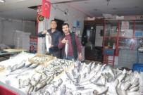 BALIK TÜRÜ - Ramazan Öncesi Balık Çeşitliliği