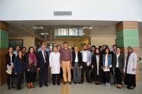 BEBEK - Reşadiye'de 'Anne Ve Bebek Ölümlerinin Önlenmesi' Çalıştayı