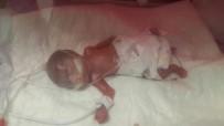 TEDAVİ SÜRECİ - 560 Gram Doğan Erva Bebek 4 Ay Sonra Taburcu Oldu
