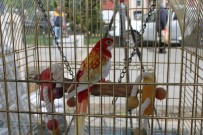 YIKIM ÇALIŞMALARI - 'Cimbom' da adadan tahliye edildi