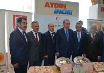 İSRAIL - AYTO Başkanı Ülken Açıklaması Türkiye'nin Kutsal Meyvesi Hurma Değil İncirdir