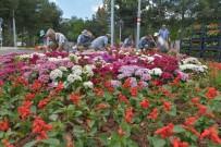 DİYARBAKIR - Diyarbakır'da 1 Milyon Mevsimlik Çiçek Dikiliyor