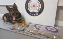 DEDEKTIF - İstanbul'dan Getirilen 4 Kilo Bonzai İle İlgili 5 Gözaltı