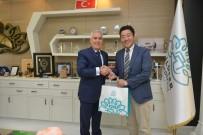 ORGANIK TARıM - Nilüfer'in Tokai Belediyesi İle Kardeşliği Japon İş Adamına İlham Oldu