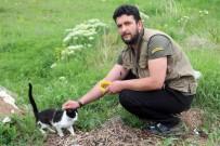 HAYVAN SEVGİSİ - Sokak Hayvanları İçin Meşrubat Şişelerini Topluyor