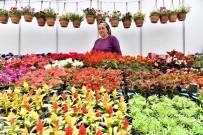 KOOPERATİFÇİLİK - Çiçeğin Başkentinde 'Çiçek Festivali'
