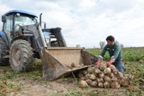 KATKI MADDESİ - Çiftçiler Şeker Pancarından Umutlu