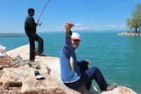 YEŞILDAĞ - İç Sularda Amatör Olta Balıkçıları Mesai Yapmaya Başladı