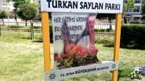 TÜRKAN SAYLAN - Söke'de Türkan Saylan Parkı Tabelasına Çirkin Saldırı