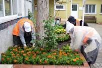 TAFLAN - Bozüyük'te 26 Camiye 10 Bin Çiçek