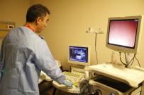 PANKREAS - Endoskopik Ultrasonografi Pankreasta Detaylı Görüntüleme Sağlayacak