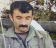 PKK'nın Sözde 'Özel Güç Sorumlusu' Öldürüldü