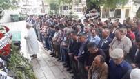 TARIŞ - Söke TARİŞ'in Muhasebe Müdürü Toprağa Verildi