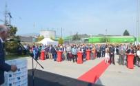 MEHMET YıLDıRıM - Gemport'tan İşçilere Kıdem Tazminatı