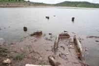 Sular Çekilince Gün Yüzüne Çıkan Mezarlara Defineciler Dadandı