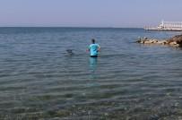 ALTıNOLUK - Balıkesir'de Sahiller Tatil Sezonuna Hazırlanıyor