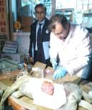 SOKAK KÖPEĞİ - Emet Belediyesi Zabıta Ekipleri Yaralı Köpek İçin Seferber Oldu