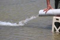 İBRAHIM TAŞDEMIR - Göle 450 Bin Yavru Sazan Bırakıldı