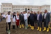 AİÇÜ'de 500 Ağaç Toprağa Ekildi