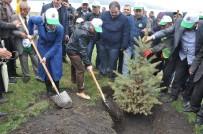 KATAR - Kars'ta 15 Temmuz Hatıra Ormanı Oluşturuldu