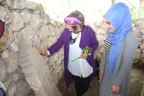 BEĞENDIK - Köy Öğretmenleri Batman Müzesi'ni Gezdi