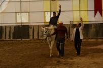 HAYVAN SEVGİSİ - Engellilere 'Ücretsiz' Atlı Terapi