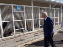 HAYVAN BARINAĞI - Yenimahalle Belediye Başkanı Yaşar'dan Yakın Takip