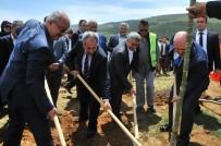 MUSTAFA BALOĞLU - Akşehir Belediyesi'nden 15 Temmuz Şehitleri Hatıra Ormanı