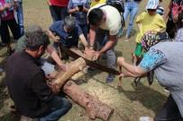 KÖMÜR OCAĞI - Bodrum'da 22. Pedasa Festivali Yapıldı
