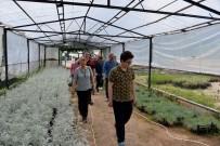 DEVRAN KUTLUGÜN - Geleceğin Peyzaj Mimarları Mersin'i Gezdi
