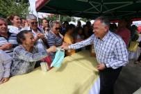 KABAK TATLıSı - Kantaron Festivali'ne Büyük İlgi
