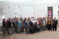 KANSER TARAMASI - Karaisalı'da 500 Kadına Ücretsiz Kanser Taraması