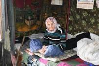 Tosya'da Sokağa Terkedilen Yaşlı Kadına Kaymakam Sahip Çıktı