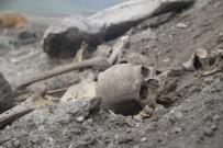 Ardahan'da Kafatası Ve İnsan Kemikleri Bulundu